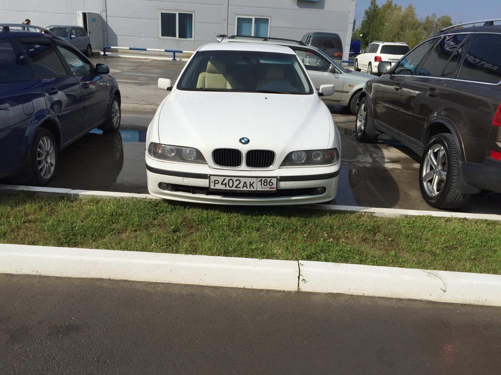 Подержанный BMW 5 серия, хорошее состояние, белый , 1997 года выпуска, цена 350 000 руб. в ао. Ханты-Мансийском Автономном округе - Югре