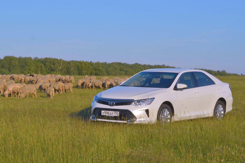 Тест-драйв Toyota Camry 2.0 от Am.ru