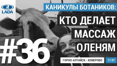 Каникулы ботаников: 36 серия - Алтай - Журнал am.ru